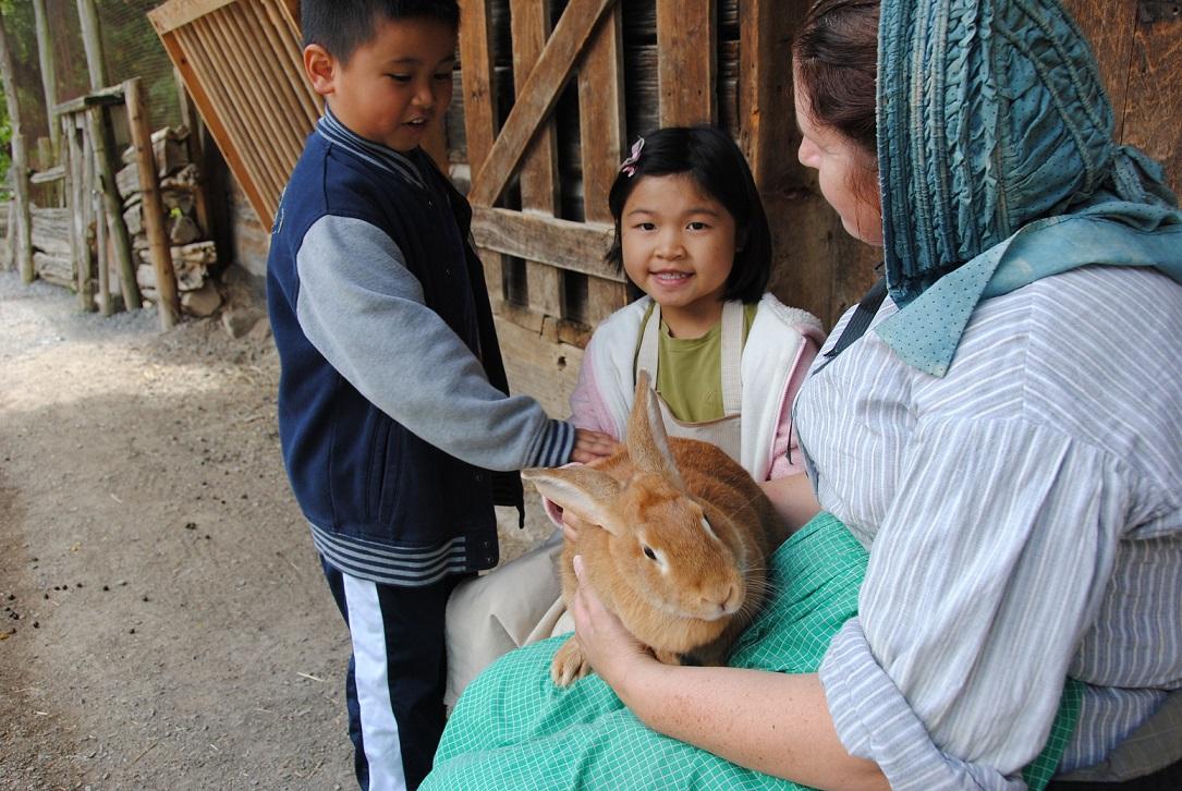 Kids petting a rabbit