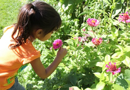 a young girl sniffs a flower in one of the Black Creek heritage gardens