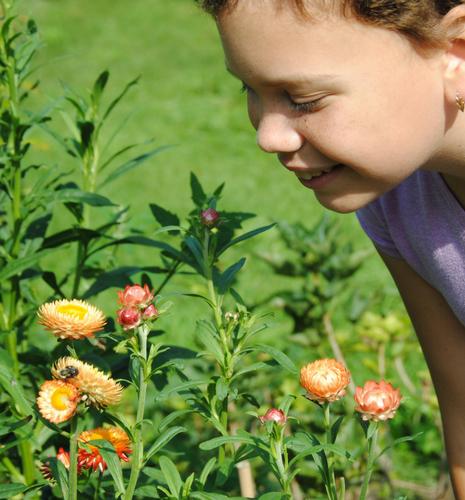 Girl smells flower in a garden