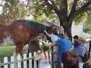 Fall Fair @ Black Creek Pioneer Village