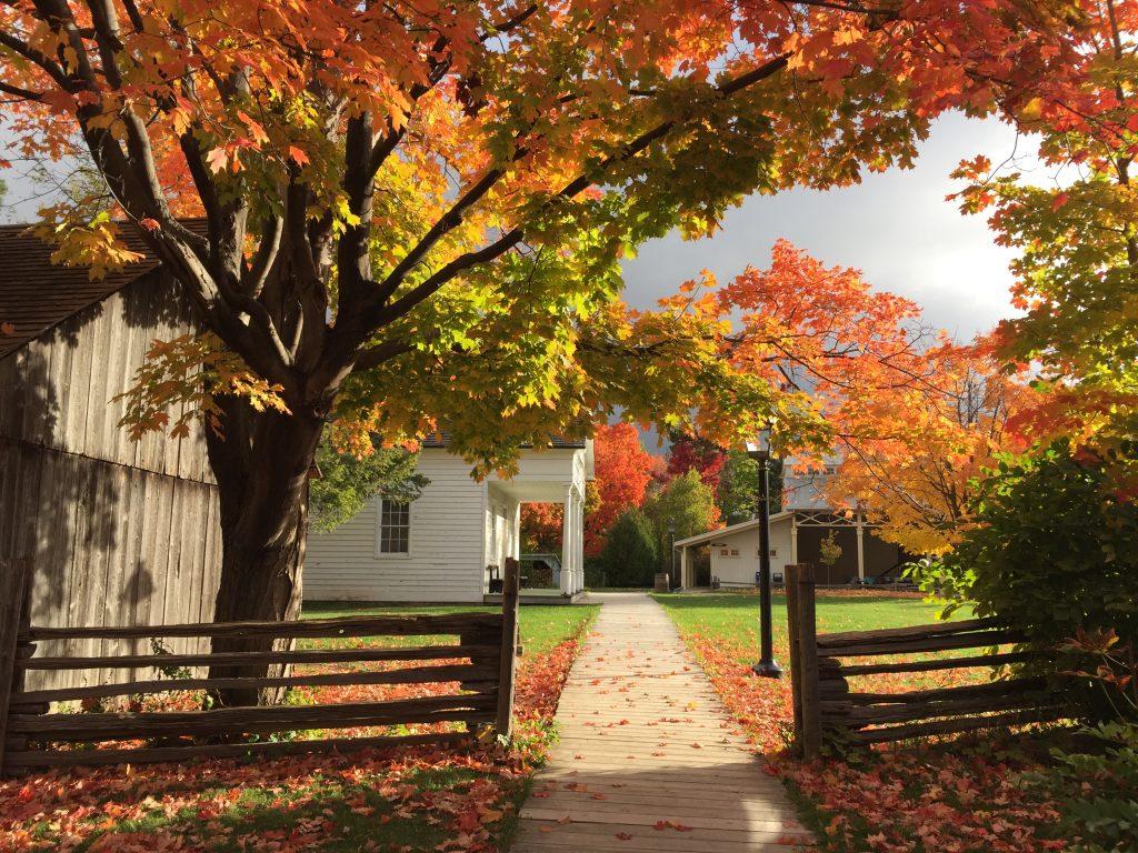 Autumn at Black Creek Pioneer Village