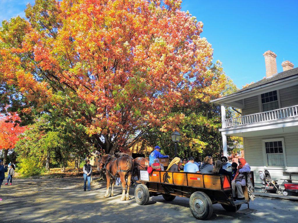 Wagon ride in autumn