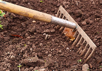farmer rakes soil
