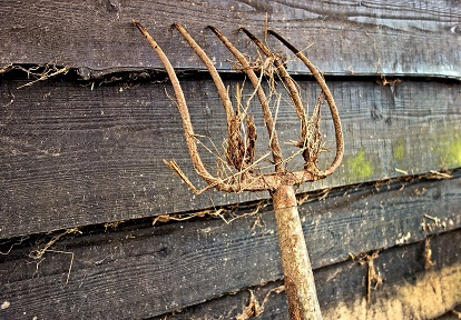 pitchfork leaning against side of barn