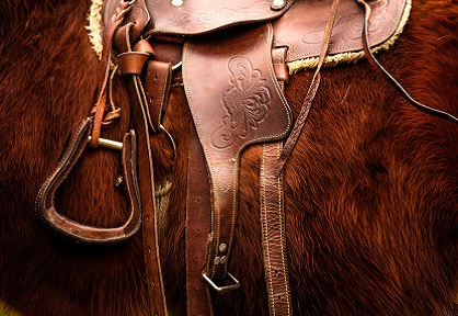 leather saddle and harness
