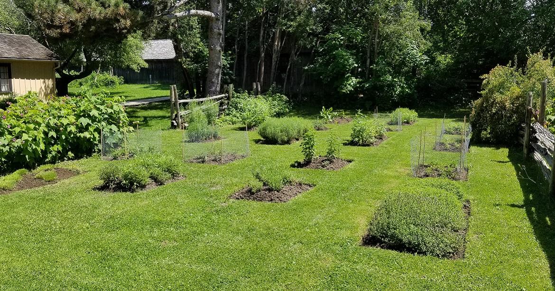 herb garden beds arranged in rectangular pattern