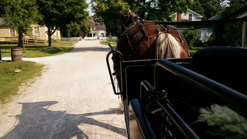 A horse pulling a wagon