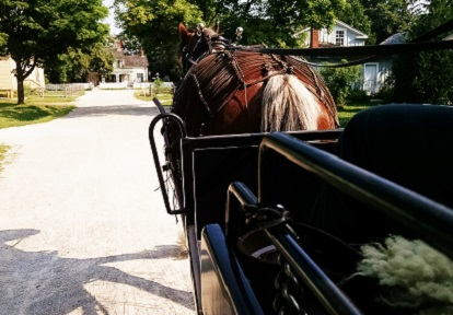 horse drawn wagon ride at Black Creek Pioneer Village
