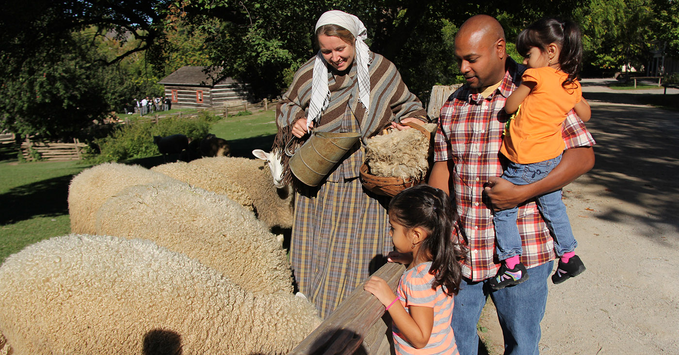 Black Creek Pioneer Village interpreter introduces a family to the local sheep