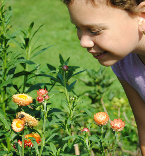 Girl smells flower in a garden