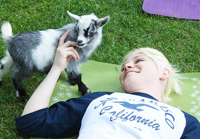 young woman enjoys goat yoga class at Black Creek Pioneer Village